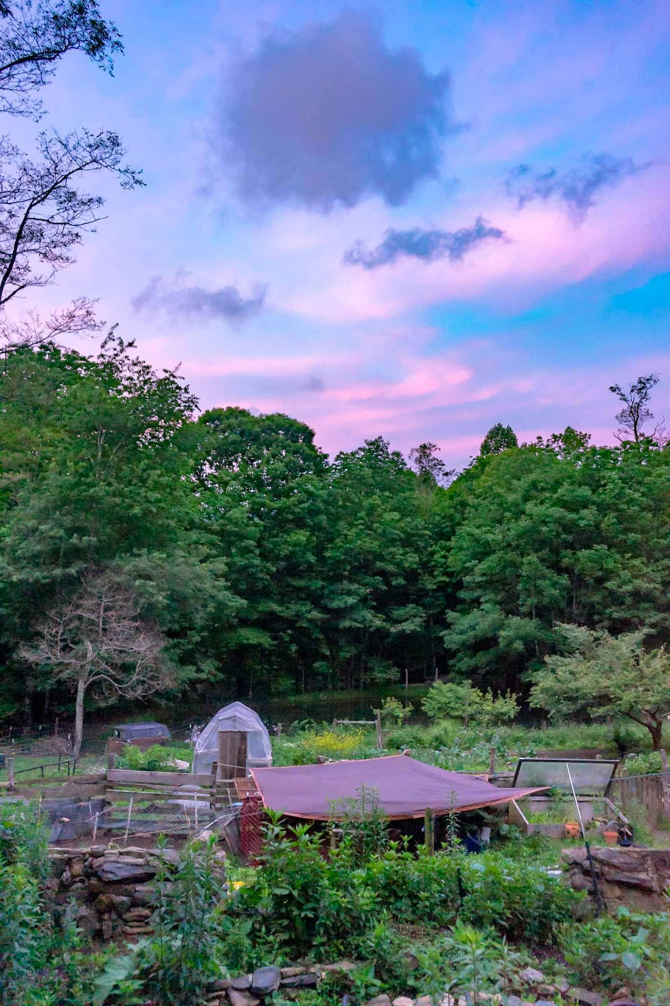 pink-blue clouds above the farm's beds and greenhouse